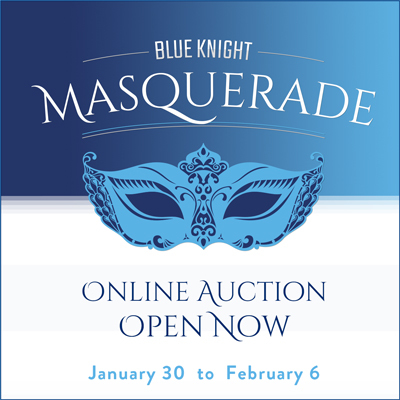 Online Auction Open Now